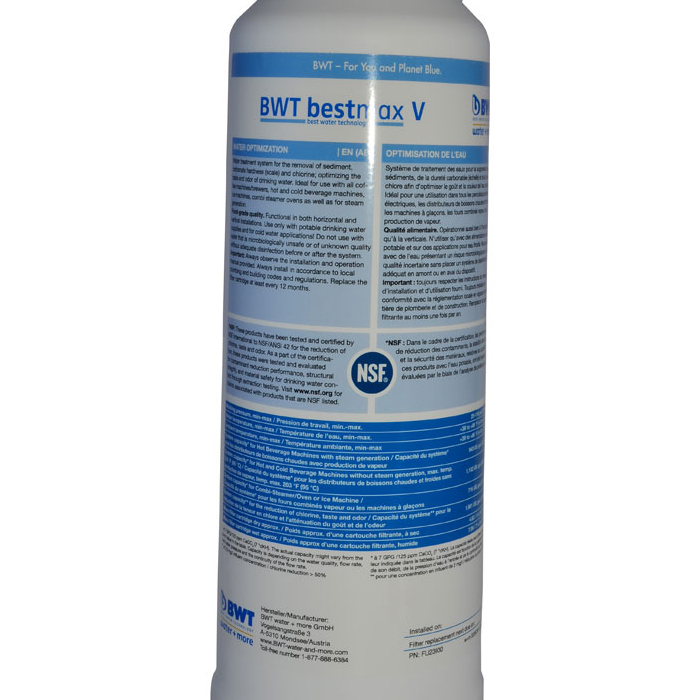 BWT bestmax in tank filter WMF