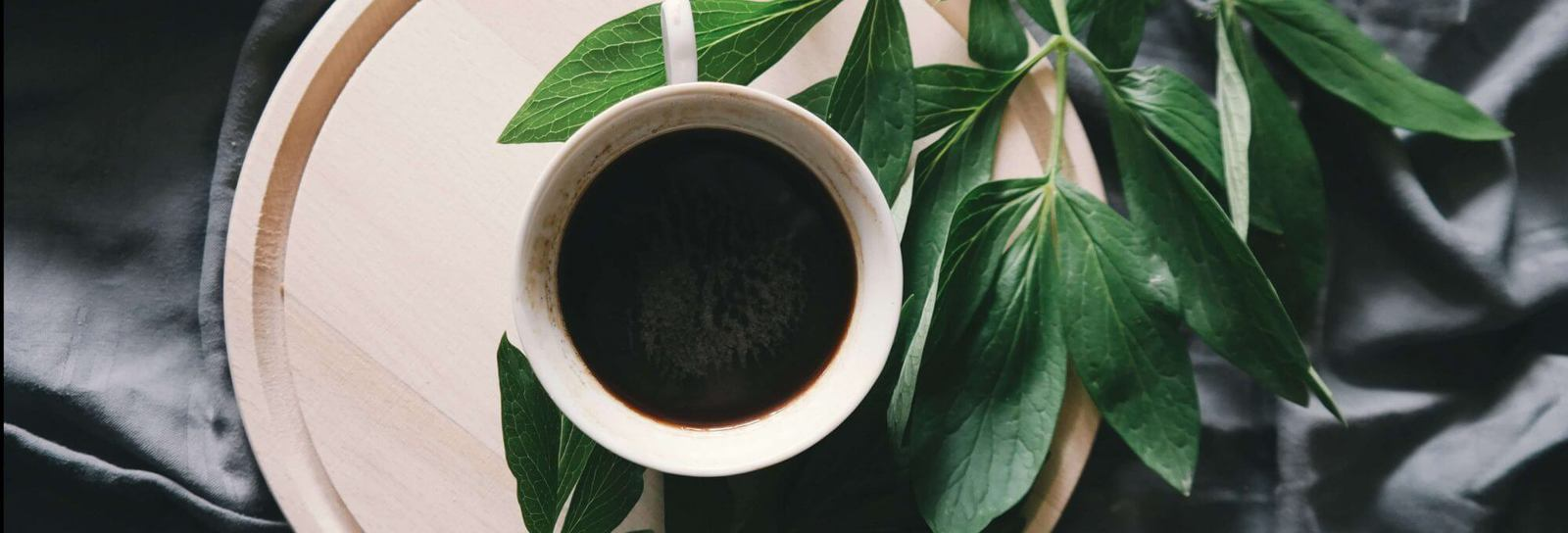 Coffee in a cup surrounded by leaves - Can you drink coffee and still be vegan banner image